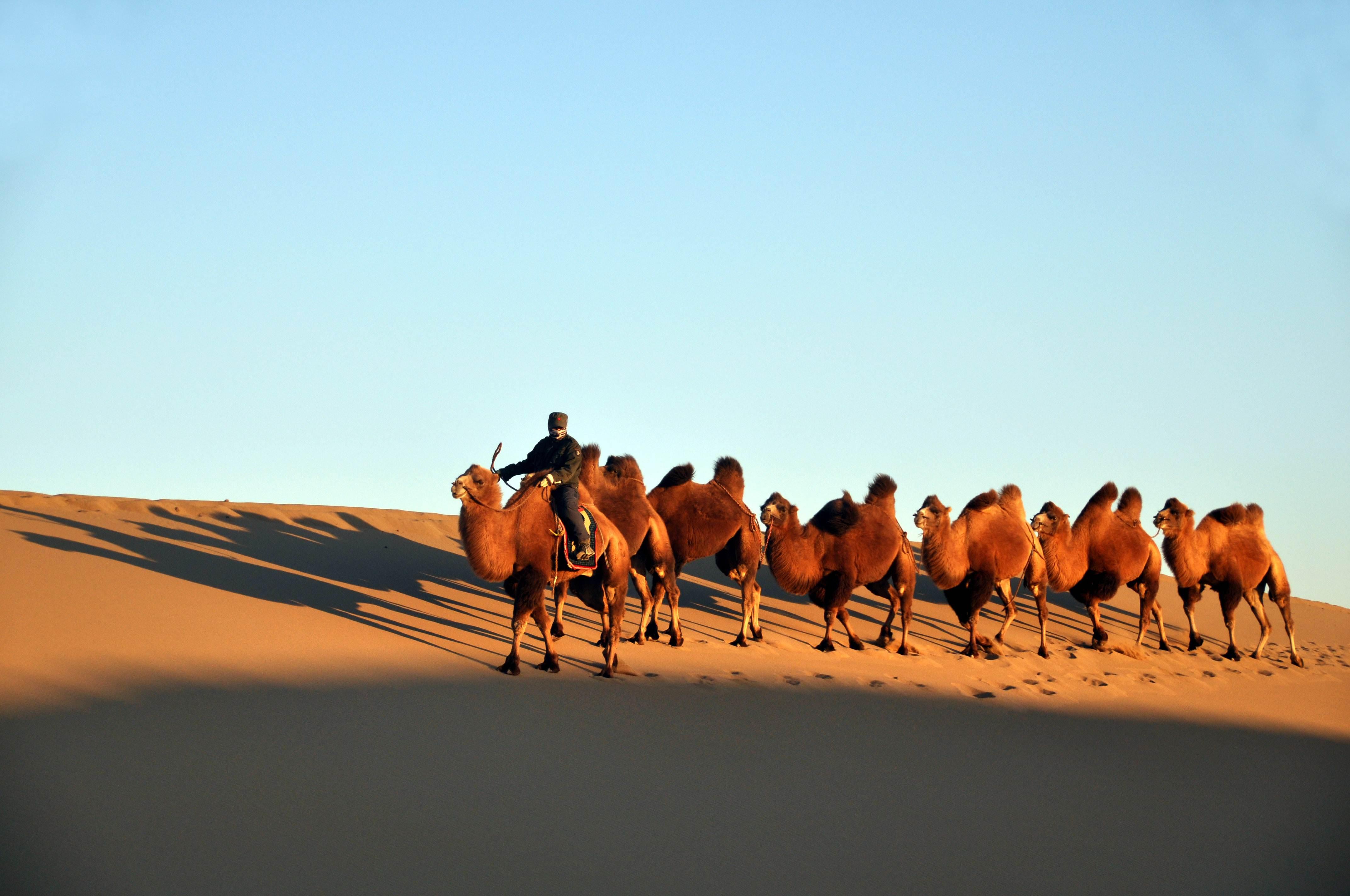 Badanjaran Desert