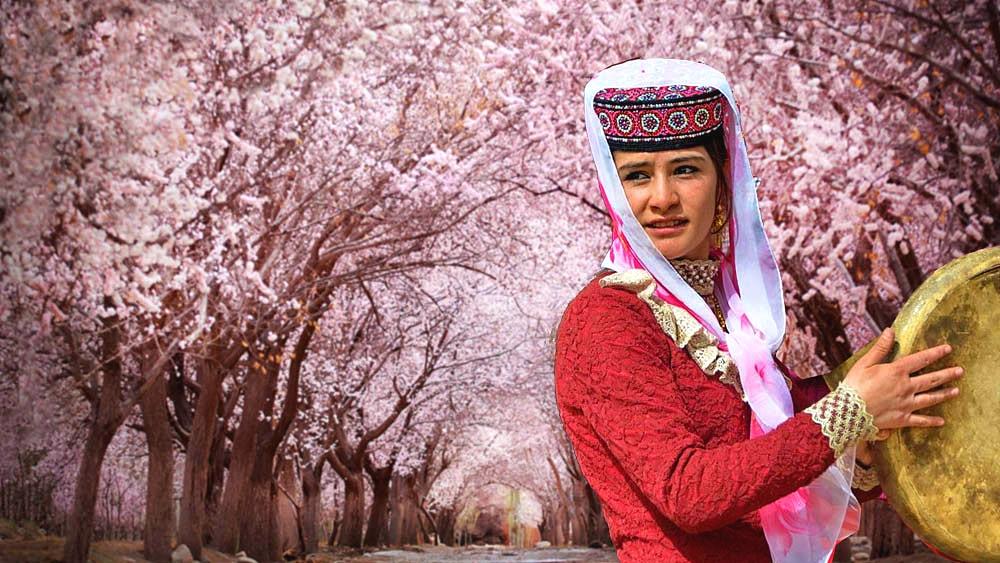 Tashkurgan Apricot Flowers.jpg