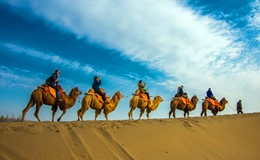 Camel Riding in Dunhuang Mingsha Moutain