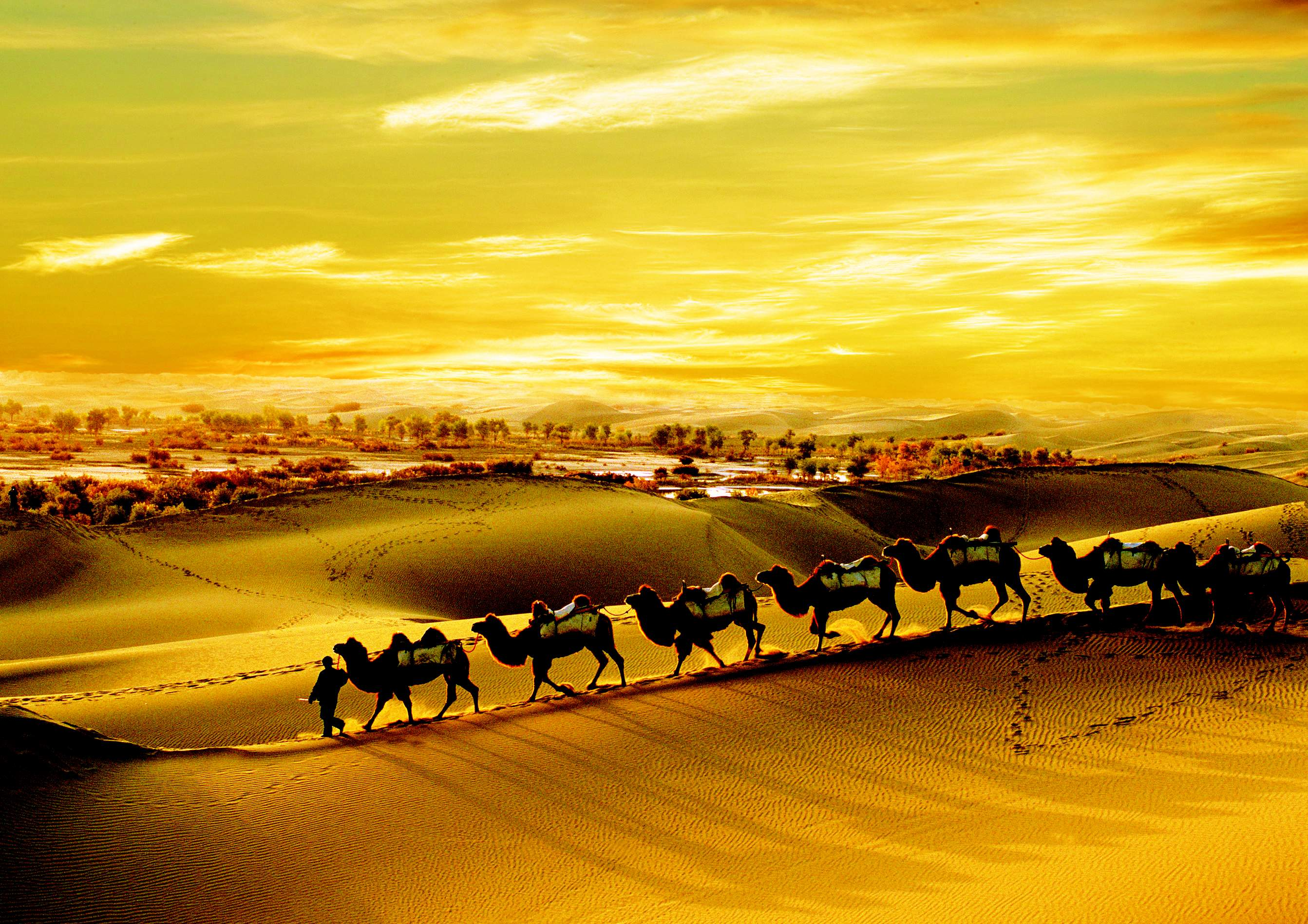 How Long does it Take to Travel the Silk Road?