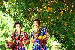 Xinjiang Weather