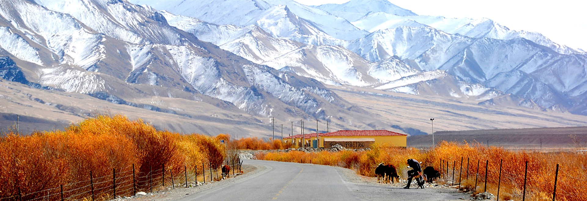 Silk Road Xinjiang Tours