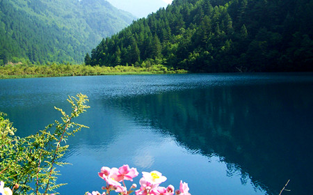 5 Days Chengdu-Jiuzhai Valley Tour