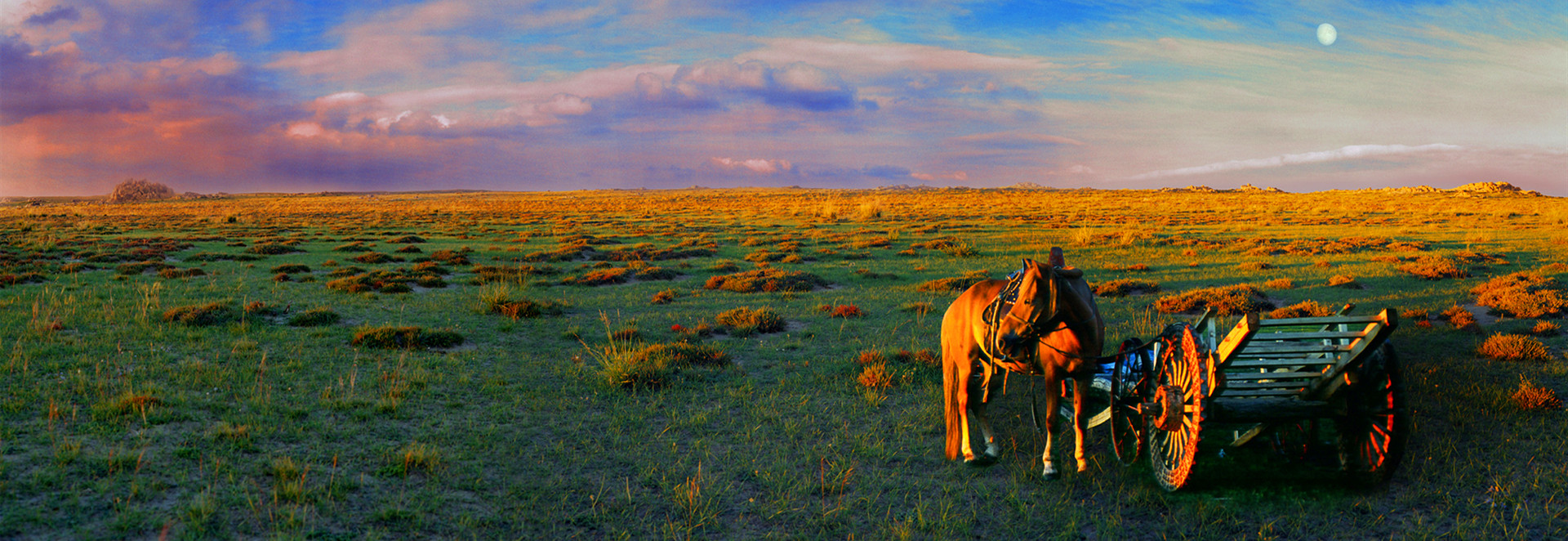 Silk Road Photography Tours