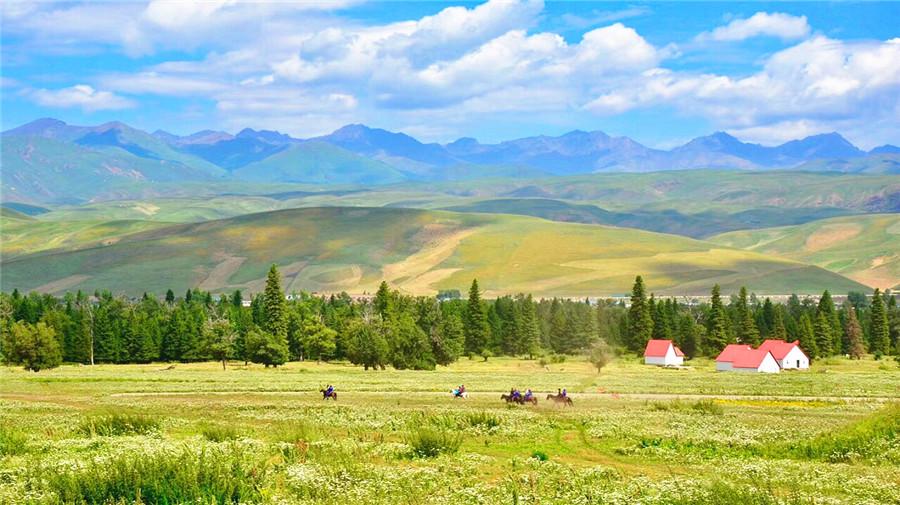 Naraty Grassland.jpg