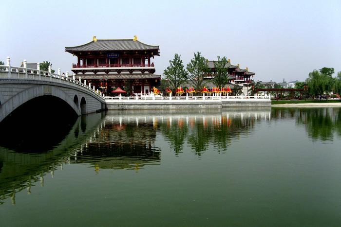 Tang Paradise.jpg