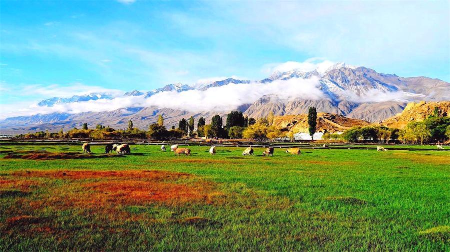 Pamir Plateau