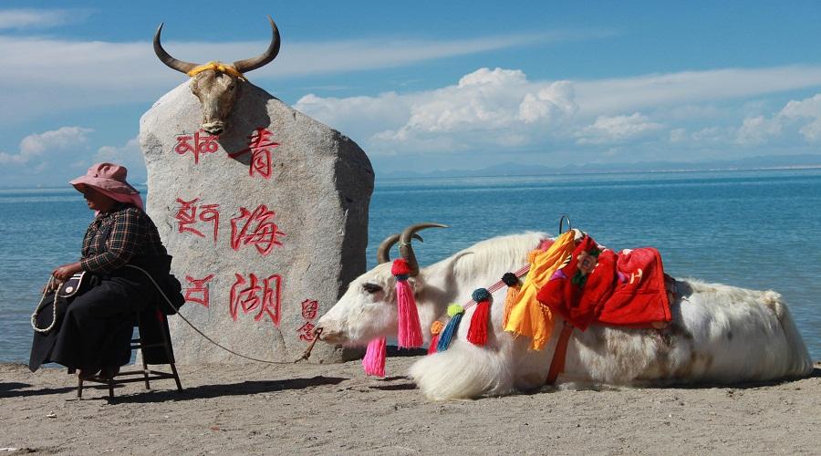 Qinghai Lake.jpg
