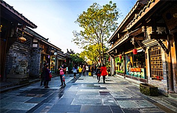 Private Chengdu City Tour