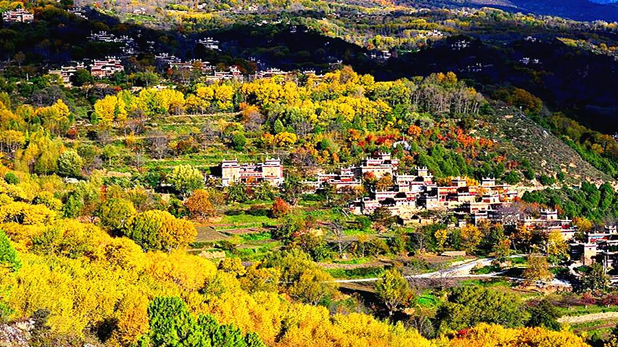 Tibetan Residences.jpg