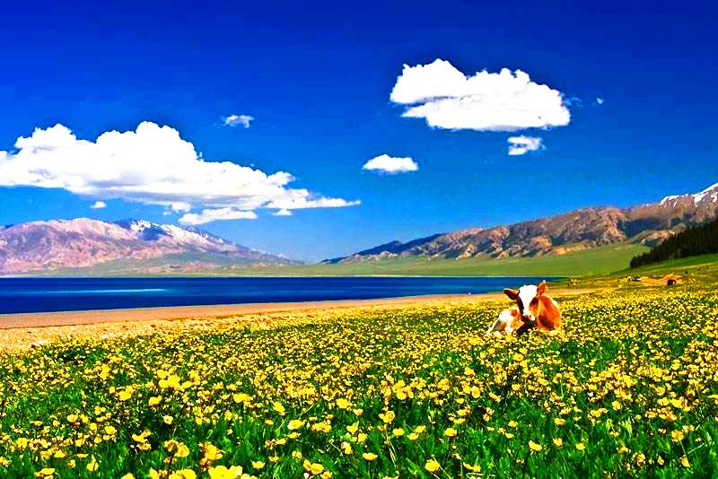Sayram Lake.jpg