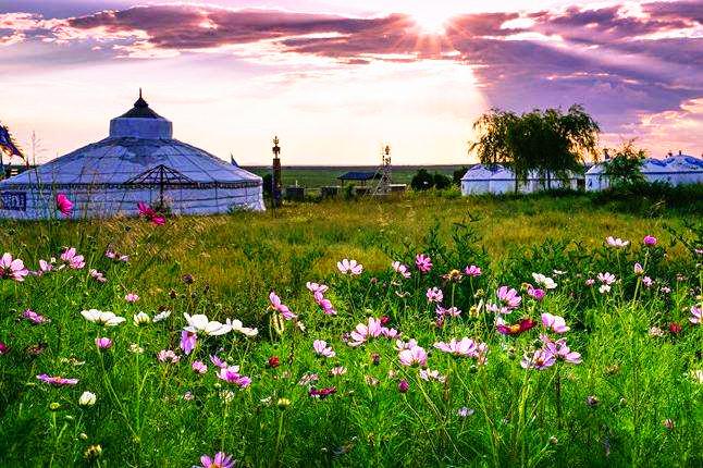 Ordos Grassland.jpg
