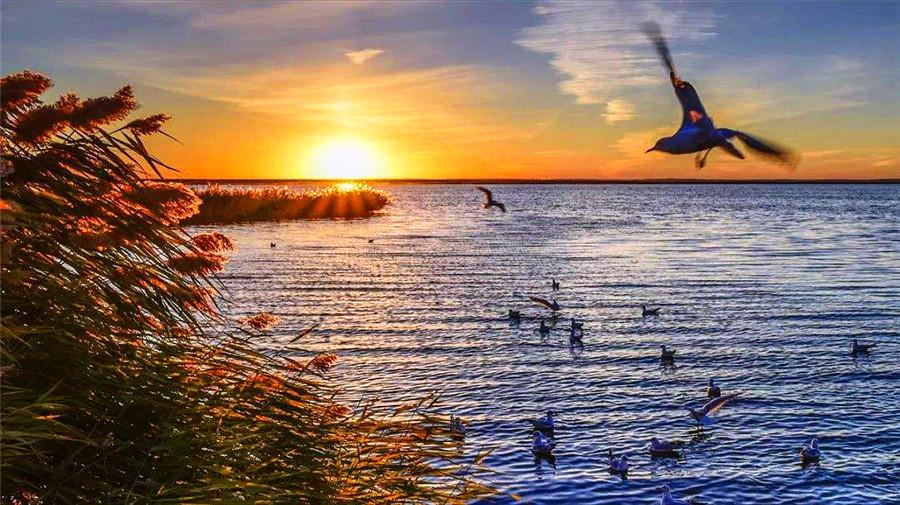 Juyan Lake.jpg