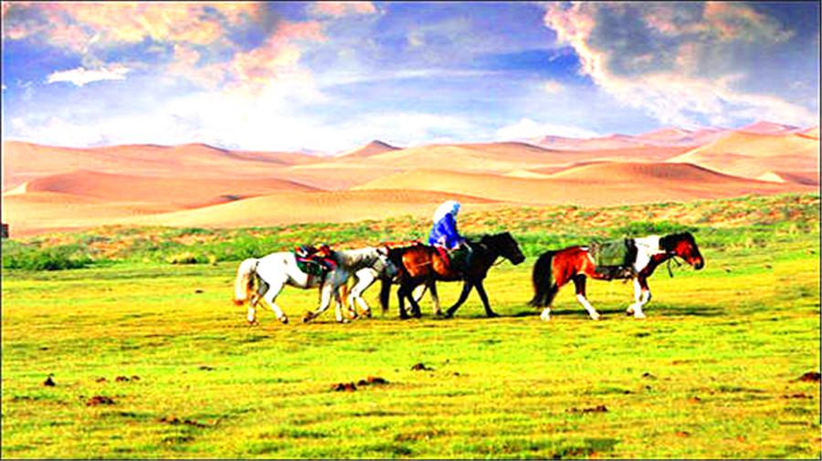 Tonghu Grassland.jpg