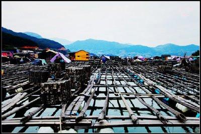 Dong'an-island 2.jpg