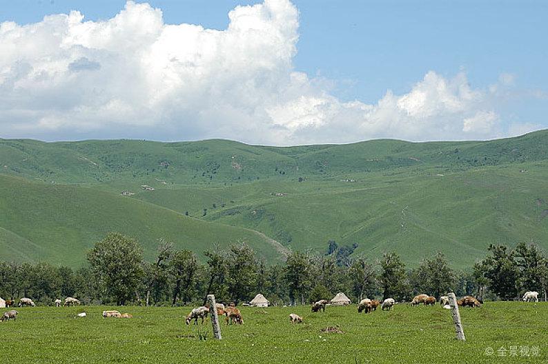 Naraty-grassland1.jpg